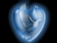 dove-heart-peace